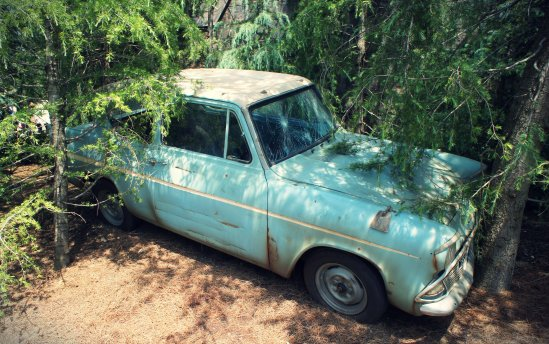 Weasley's Flying Ford Anglia