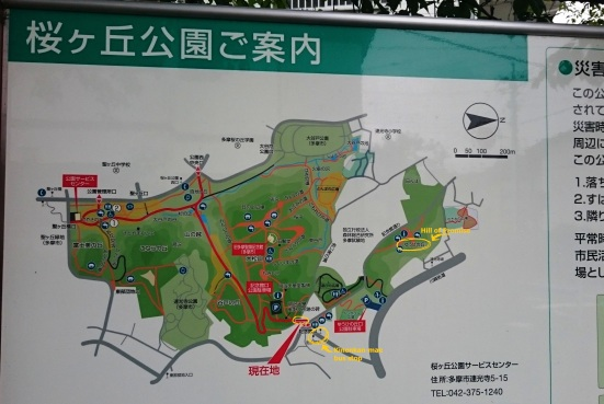 you can find this map at the entry of the park. take a moment to locate where you are.