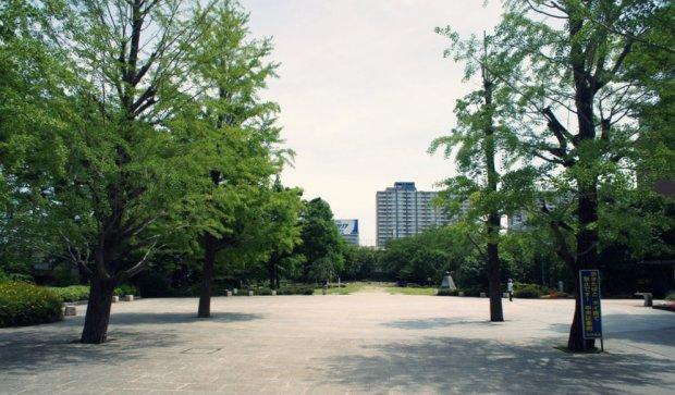 hamacho_park