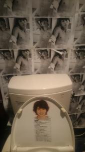 arasick_toilet2